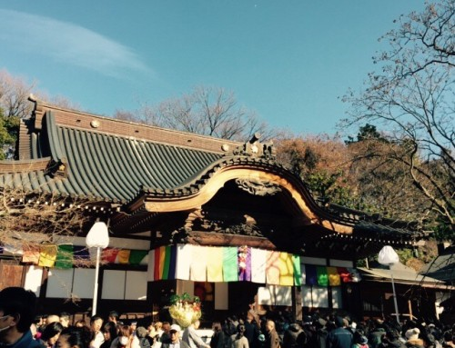 【久々の日本、お正月を感じてきました~✨】