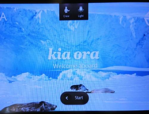 """kia ora""~初NZ○○旅行記②~"