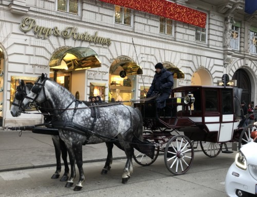 2019-2020 Vienna 後編